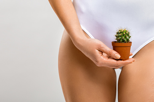 Depilation in the bikini zone. A woman holding a cactus in her hand